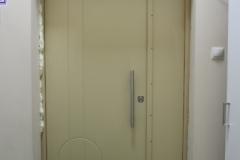Дверь крашенный мдф